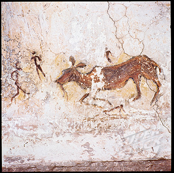 Cave painting showing what appears to be a persistence hunt. Note the running figures, the lack of weapons and the way the prey seems to have collapsed.